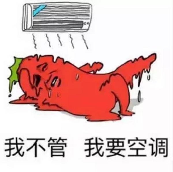 今天天气很热怎么发朋友圈 天气很热的幽默图片说说6