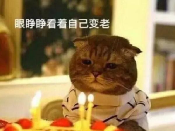 生日发朋友圈怎样写好 生日求祝福语的朋友圈说说