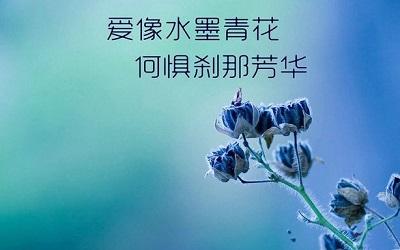 人生中伤感的一些说说 爱伤人情伤魂;来世不再踏红尘