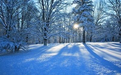关于下雪了的朋友圈搞笑说说