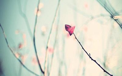 人生中伤感的一些说说 爱伤人情伤魂;来世不再踏红尘3