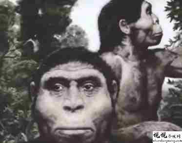 最近很火的18000年前猿人的搞笑文案带图片 让人意想不到的沙雕句子6