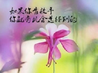 句句经典的人生感悟说说 精辟的人生道理语句,获益匪浅