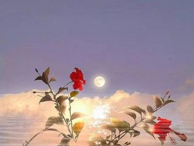 平安夜暖心励志句子加英文,满满的正能量,你会喜欢的