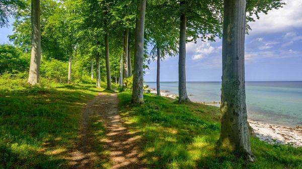 感受大自然的说说简短句子 描述美好大自然景色迷人的句子2