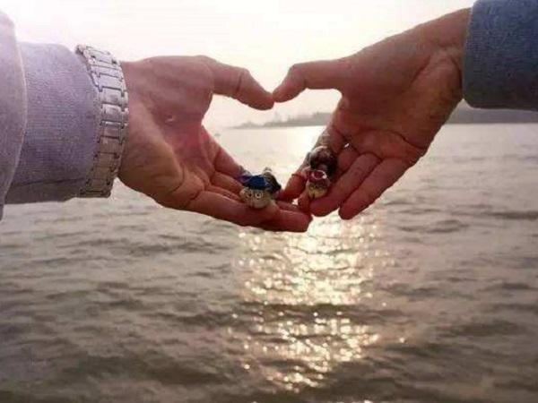朋友圈爱情说说一辈子只爱你 对你死心踏地的爱情短句