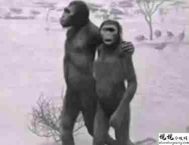 最近很火的18000年前猿人的搞笑文案带图片 让人意想不到的沙雕句子7