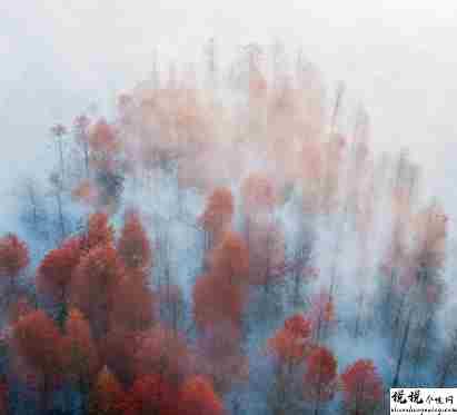秋季降温的文案带图片 秋季降温问候语的文案4