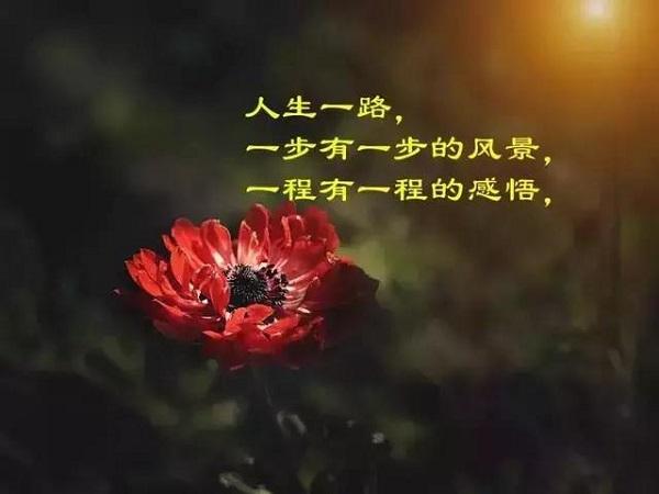 感悟人生的经典说说 心里最最最重要旳位置,依旧留给你