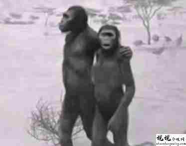 最近很火的18000年前猿人的搞笑文案带图片 让人意想不到的沙雕句子1