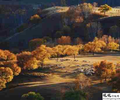 秋季降温的文案带图片 秋季降温问候语的文案12