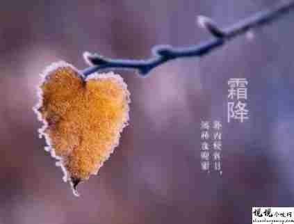 霜降节气发朋友圈的祝福语 2021霜降节气的暖心文案