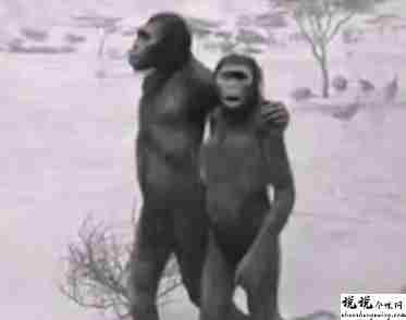 最近很火的18000年前猿人的搞笑文案带图片 让人意想不到的沙雕句子